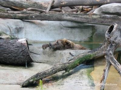 Ball Park Zoo, MI