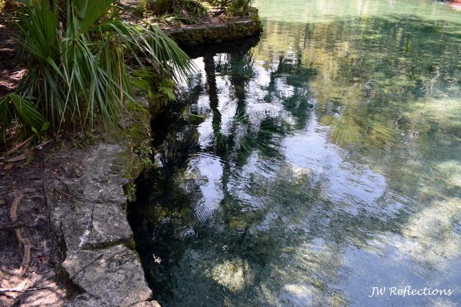 Wekiva Springs 7.jpg